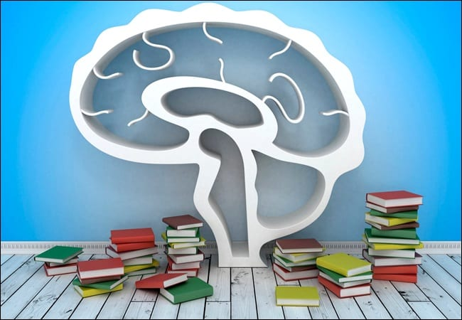 5 dicas neurociencia estudar para concursos publicos