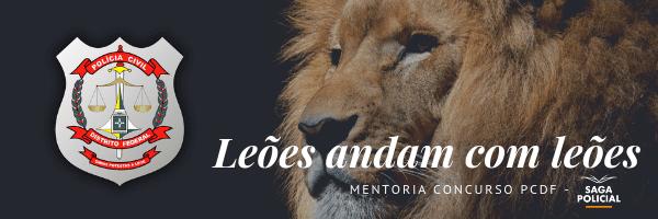 Leões andam com leões